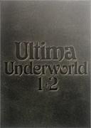 ULTIMA UNDERWORLD 1+2